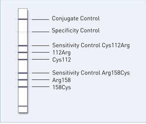 reaction zones GenoType ApoE