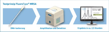 Testprinzip FluoroType® MRSA