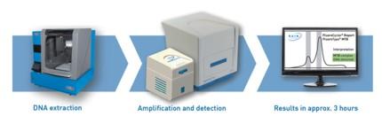 Test principle FluoroType® MTB