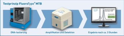 Testprinzip FluoroType® MTB