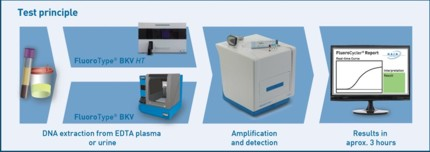 Testprinzip FluoroType® BKV