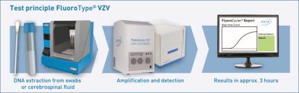 Test prinicple FluoroType® VZV
